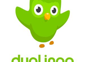 تحميل تطبيق دوولينجو لتعلم اللغه الإنجليزية - رابط مباشر مجاناً