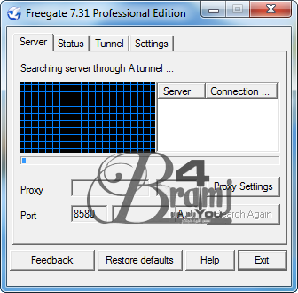 -Freegate Professional 7.31
