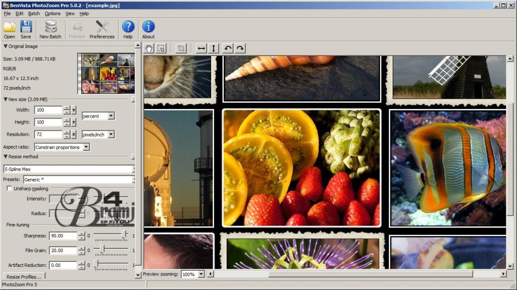 PhotoZoom-Pro-5