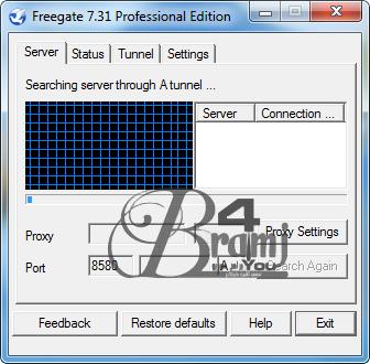 Freegate-Professional-7.31