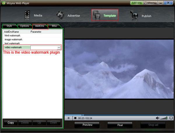 video-watermark1