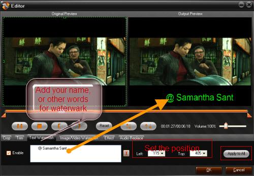 watermark-the-video